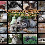 161009_kalender_uebersicht