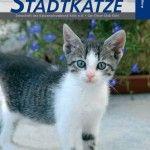 Stadtkatze02_2008